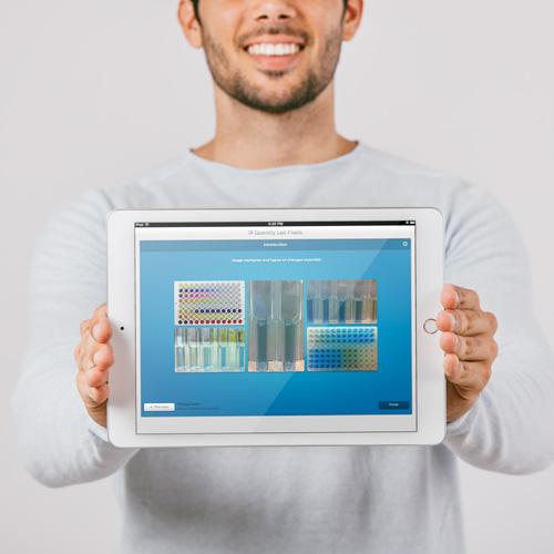 Quantify-lab-pixels-process-2